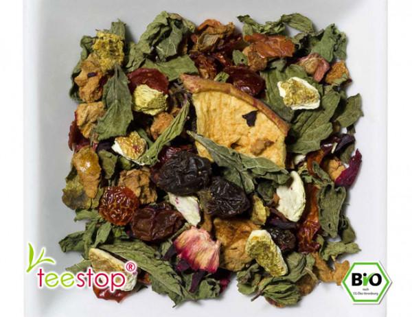 Bio Früchtetee Granatapfel Ägyptische Minze