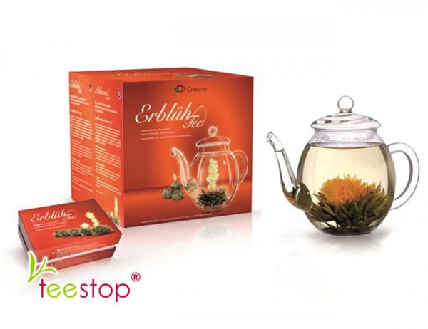 Creano Geschenkset ErblühTee Weißer Tee